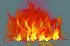 Flame Burning Vector
