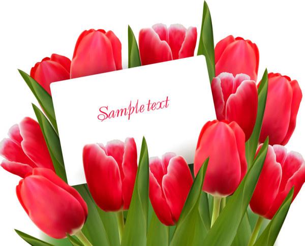 free valentine's day tulip vector 01 - titanui, Ideas