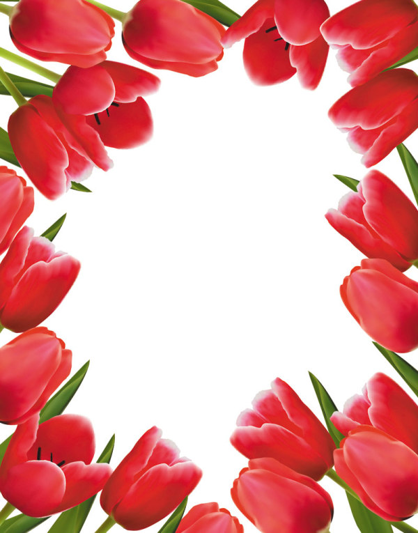 Free Valentine's Day Tulip Vector 02 - TitanUITulips Page Borders Clipart Free