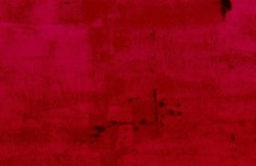Rose Red Dilapidated Wall Background Texture