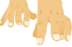Vector Gesture Illustration