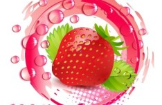 100 Natural Strawberry Vector Illustration
