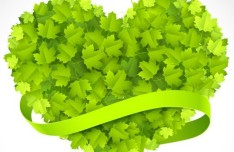 Clean Green Leaves Vector 03