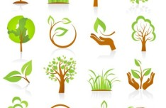 Green ECO Concept Vector Elements 02