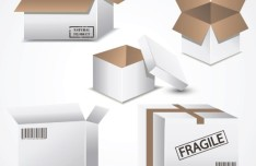 Fragile Natural Product Package Box Design Vector