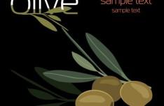 Elegant Vector Olive Oil Design Elements 01