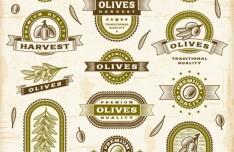 Vintage Premium Quality Olive Oil Label Stickers Vector