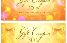 Golden Gift Coupon Cards Vector 01