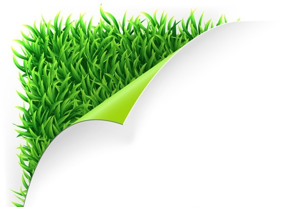 Free Vector Green Grass Background 02 Titanui
