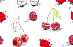 Hand Drawn Fruits Vector Illustration 02