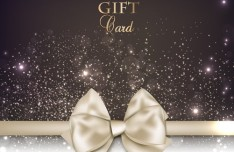 Vector Fantastic Gift Cards with Ribbon Bows 04
