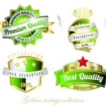 Set Of Green Golden Vintage Labels Vector