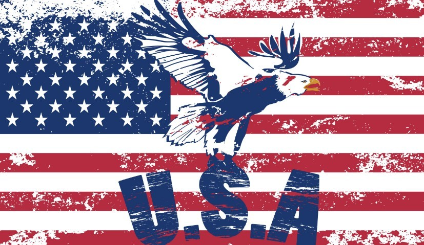 american flag vintage vector - photo #1