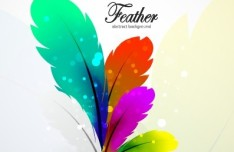 Vector Colorful Abstract Feathers Background 03