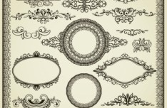 Vintage Black Royal Ornamental Patterns Vector