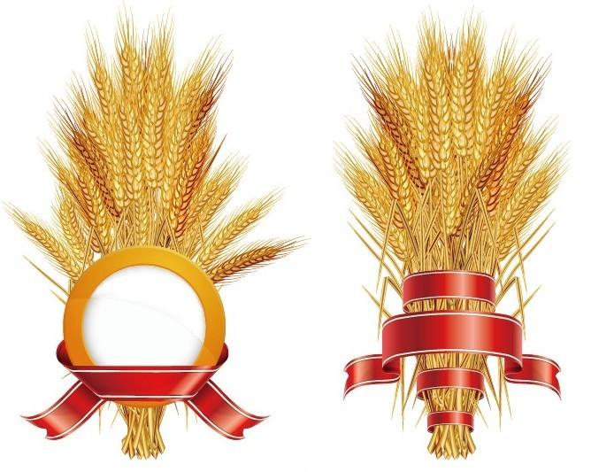 Wheat Stalks Design Ma...