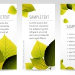 Vector Fresh Vertical Banners with Maple Leaf Backgrounds 01