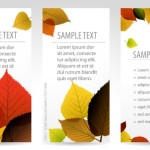 Vector Fresh Vertical Banners with Maple Leaf Backgrounds 02