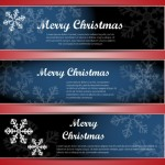 Set Of Vector Merry Christmas Banners with Bright Snowflake Backgrounds 02