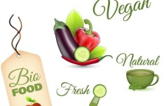 Set Of Vector Fresh Natural Healthy Food Icons 01