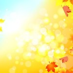 Shiny Autumn Maple Leaf Background Vector 01