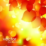 Shiny Autumn Maple Leaf Background Vector 05