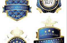 Set Of Vector Blue High Quality Labels with Golden Borders