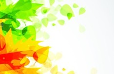 Green and Yellow Leaves Vector Illustration