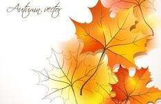 2014 Autumn Graphic Design Resources