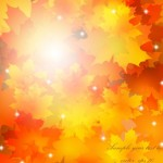 Shiny Fall Yellow Maple Leaves Vector