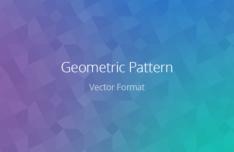 Geometric Pattern Vector PSD