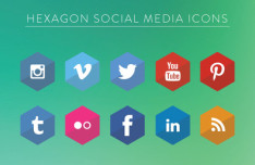 Flat Hexagon Social Icons Vector