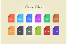 12 Flat File Type Icons PSD