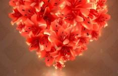 Pink Flower Heart Background Vector