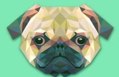 Polygon Pug Vector