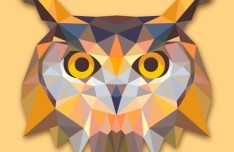 Low Poly Owl Vector
