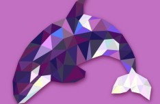 Abstract Low Poly Dolphin Vector