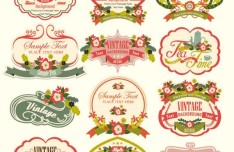 Vintage Floral Logo & Badge Set Vector