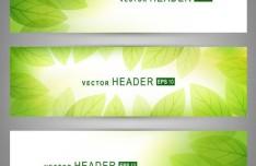 Sunshine Green Leaves Header Set Vector