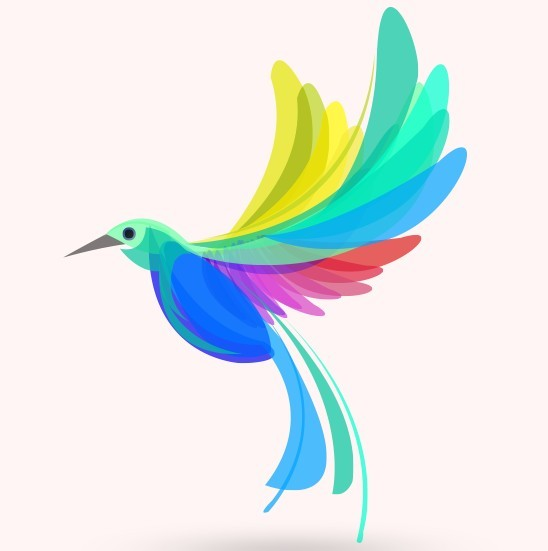Free Colorful Summer Bird Vector Illustration - TitanUI