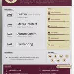 Clean Resume / CV Vector Templates (3 Colors)