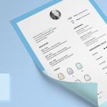 Minimal Clean Resume / CV Template With Icons