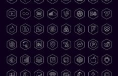48 Hexagon Social Icons Vector