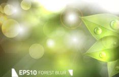 Green Forest Blur Vector Background