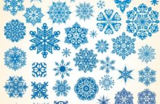 Various Snowflakes Vector