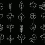 20 Leaf Line Icons Vector